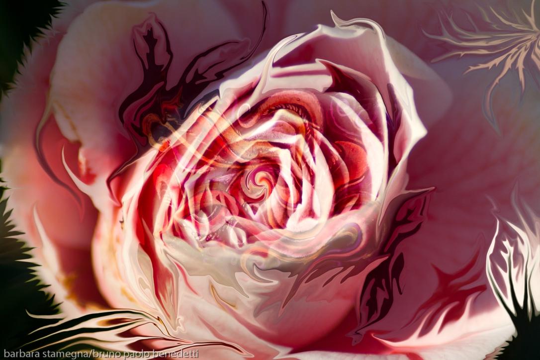 astrazione con vortice centrale a forma di bocciolo di rosa di colore rosa dominante e forme fluide fluttuanti che richiamano forme della natura