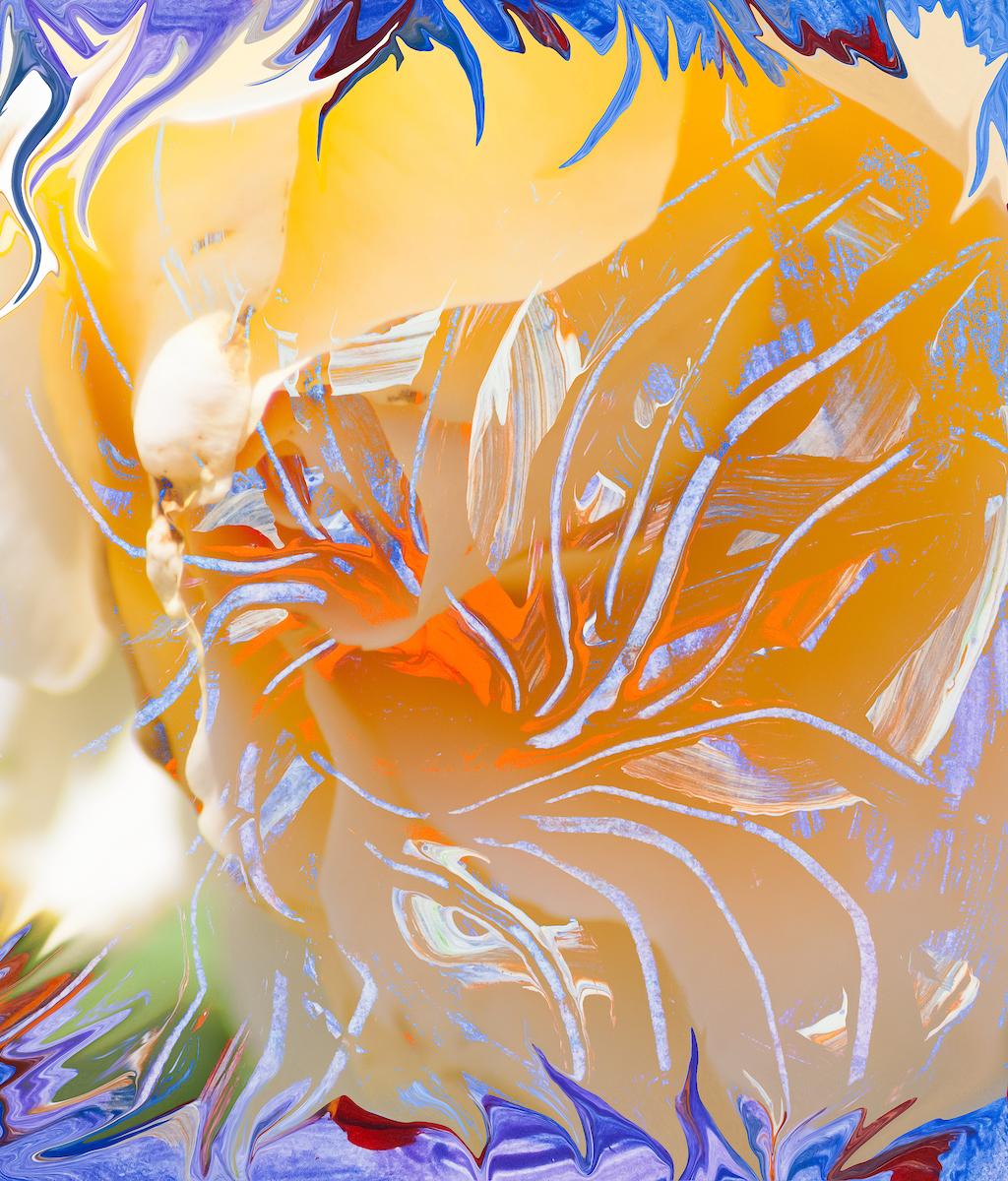 immagine astratta dai colori caldi con astrazione di fiore con forme astratte che richiamano dei pistilli che si sviluppano fluttuando