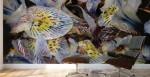 murale adesivo ambientato in studio con tema floreale astratto di bbs arte